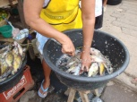 Cleaning fish, Nicaragua