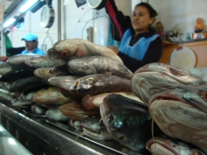 fish at a market in Ecuador